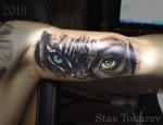 тату глаз тигра